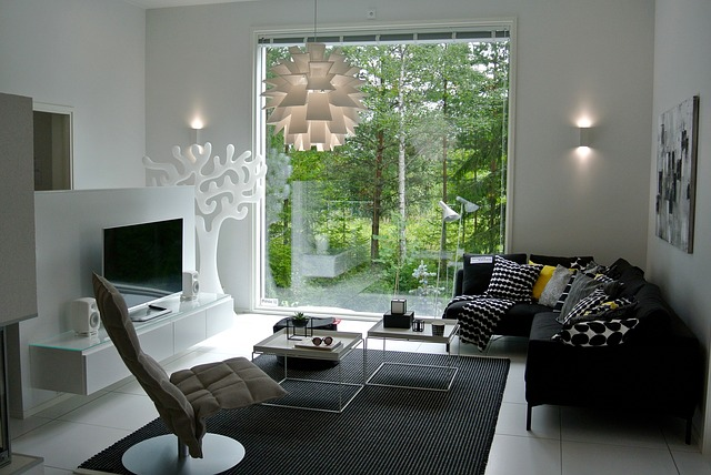 okno do lesa